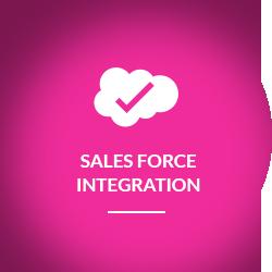 saleforce_ingration